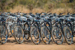 WBR_The_Bike