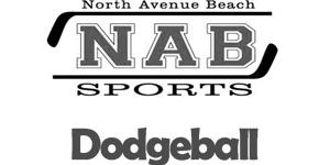 North Avenue Beach Sports | Sports Management & Marketing